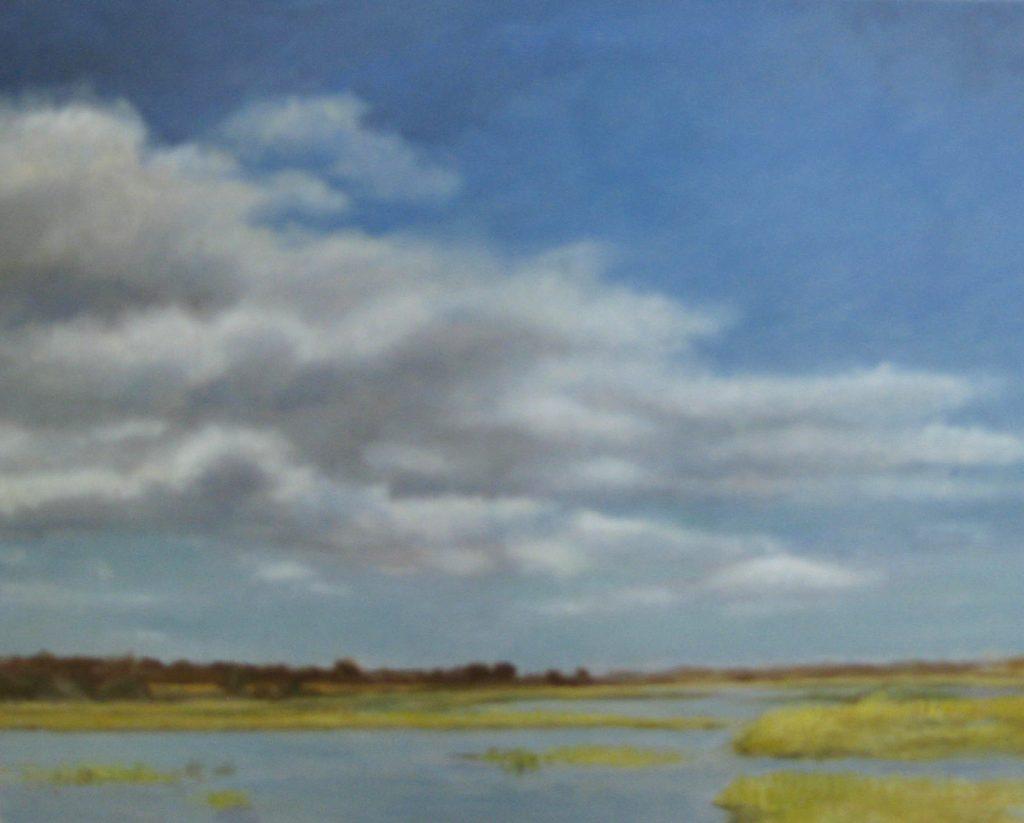 Essex Marshes Summer CAS