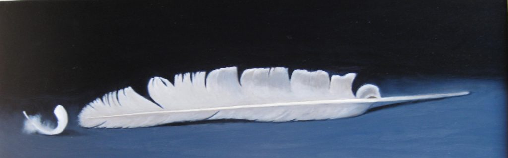 Two Swans Feathers